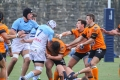 Bagarre rugby (2)