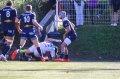 Bagarre rugby bayonne agen (1)