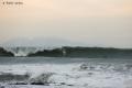 Surf-Avalanche-3