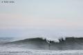 Surf-Parlementia-7