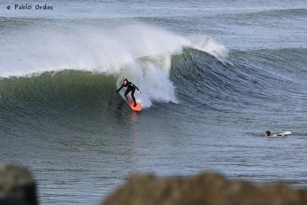 Surf-30