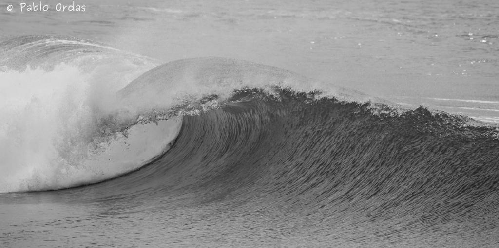 Anglet surf photo pablo ordas (12).jpg