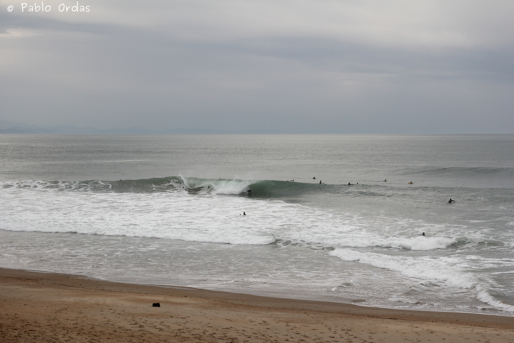Anglet surf photo pablo ordas (15).jpg