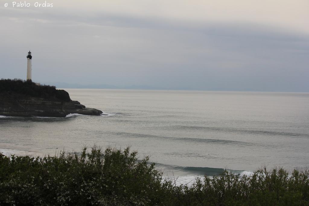 Anglet surf photo pablo ordas (19).jpg