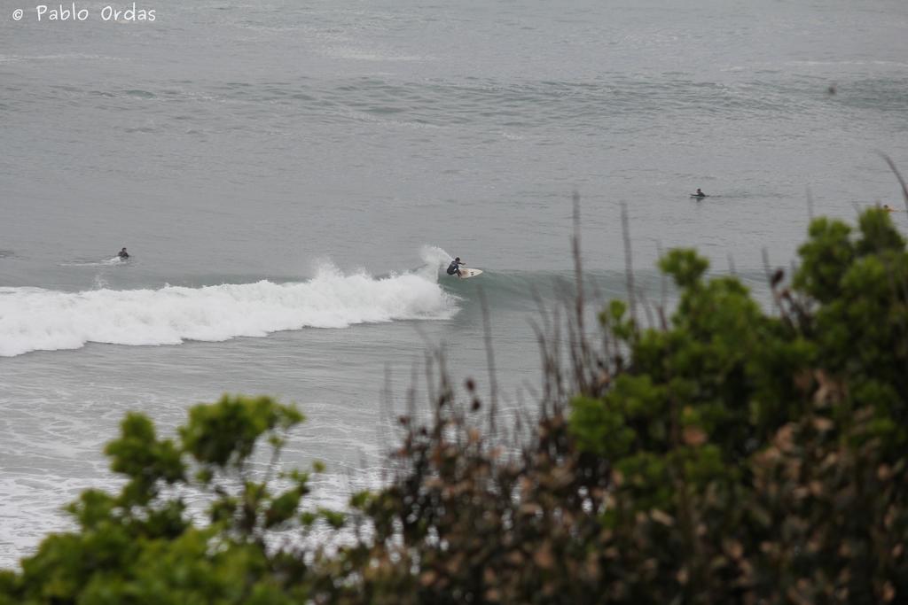 Anglet surf photo pablo ordas (20).jpg