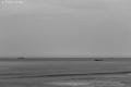 Anglet surf photo pablo ordas (16).jpg