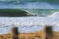Surf Hossegor (1)