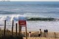 Surf Hossegor (2)