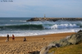 Plage des cavaliers anglet (12)